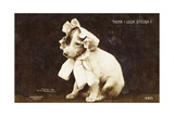 Think I Look Stylish Photographic Postcard Giclee Print