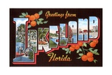 Greetings from Lakeland, Florida Giclee Print