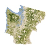 Satellite Biomass Map of Western Washington State Giclee Print
