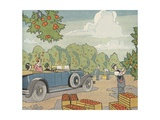 Illustration of a Chauffered Car in an Orange Grove Giclee Print