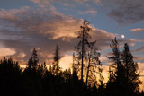 Sunset Clouds and Moon, Yellowstone Photographic Print by Vincent James