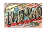 Greetings from Tomahawk, Wisconsin Giclee Print