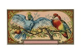 Perfume Label with Two Parrots Giclee Print