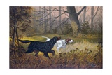 Hunting Dogs in Woods Giclee Print