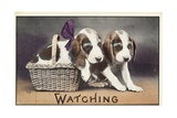 Watching Postcard Giclee Print