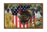 Thanksgiving Postcard with Turkey and Stars and Stripes Motif Giclee Print