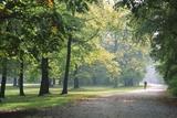 Stefano Amantini - Englischer Garten in Munich Fotografická reprodukce