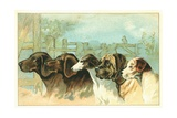 Trade Card with the Profiles of Five Different Dog Breeds Giclee Print