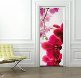 Orchid Door Wallpaper Mural Vægplakat i tapetform