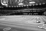 Minnesota Metrodome Archival Photo Sports Poster Photo