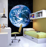 Earth Deco Wall Mural Wall Mural