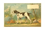 Trade Card of a Hound Dog in the Forest Giclee Print