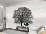 Silhouette Tree Wallpaper Mural Wallpaper Mural