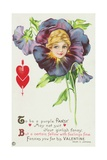 To Be a Purple Pansy May Not Suit Your Girlish Fancy Postcard Giclee Print