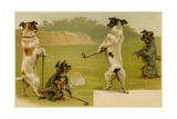 Postcard of Dogs Golfing Giclee Print