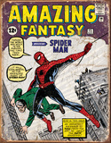 Spider Man Comic Cover Tin Sign Tin Sign