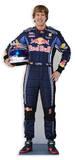 Sebastian Vettel Postacie z kartonu