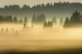 Misty Ridge I Giclee Print by Jon Hart Gardey