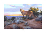 His Territory Print by Edward Aldrich