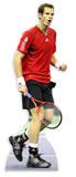 Andy Murray Postacie z kartonu