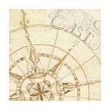 Coast to Coast Sepia III Premium Giclee Print by Daphne Brissonnet