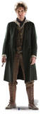 The 8th Doctor Paul McGann - 50th Anniversary Special Silhouette découpée
