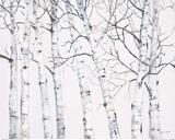 Birch Grove 1 Poster von Hope Smith