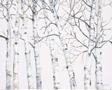 Birch Grove 1 Posters by Hope Smith