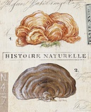 Nature's Fungus Posters by Angela Staehling