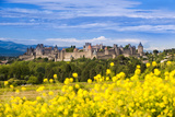 The Fortified City of Carcassonne, Languedoc-Roussillon, France Papier Photo par Nadia Isakova