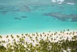 Caribbean, Dominican Republic, La Altagracia Province, Punta Cana, Bavaro Photographic Print by Alex Robinson