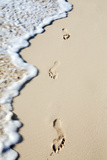 Caribbean, Dominican Republic, La Altagracia Province, Punta Cana, Bavaro, Footprints in the Sand Photographic Print by Alex Robinson