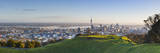 Mount Eden Volanic Crater and City Skyline Auckland, North Island, New Zealand, Australasia Photographic Print by Doug Pearson