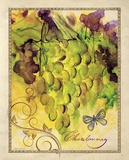 Valley Vines 4 Prints by Patricia Haberler