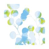 Blue Plums I Giclée-Premiumdruck von Ricki Mountain
