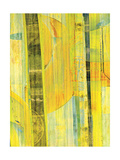 Yellow Mix II Premium Giclee Print by Ricki Mountain