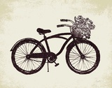 Flower Basket Bike Prints by Evangeline Taylor