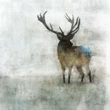 Silent Stag Posters by Ken Roko