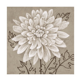 White Chalk Flower 2 Prints by Ariane Martine