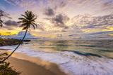 Caribbean, Barbados, Bottom Bay, Bottom Bay Beach Photographic Print by Alan Copson