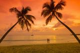 Caribbean, Martinique, Sainte Anne, Grande Anse Des Salines Photographic Print by Alan Copson