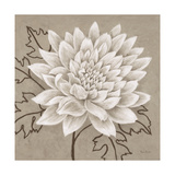 White Chalk Flower 1 Posters by Ariane Martine