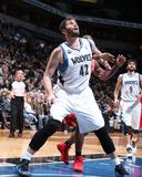 Feb 10, 2014, Houston Rockets vs Minnesota Timberwolves - Kevin Love Photo by David Sherman