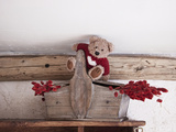 The Teddy Bear and Dried Flowers Photographic Print by  Cazeba