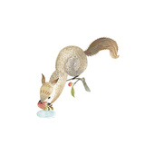 Happy Squirrel Giclee Print
