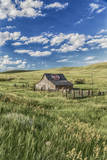 Old Barn, Montana, Usa Photographic Print by Peter Adams