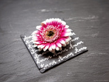 Multicolor Gerbera on Love Photographic Print by Leon Le Baron