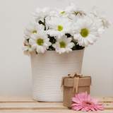 Daisy Bouquet Photographic Print by  Cazeba