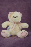 Sick Teddy Bear with a Thermometer Photographic Print by Laetitia Julien