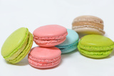 Macaroons Multicolored on White Background Photographic Print by Laetitia Julien